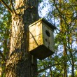 Bird house on tree — Stock Photo