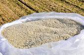 氮肥λίπασμα αζωτούχο — 图库照片