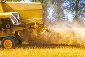 Combiner la récolte de maïs — Photo
