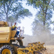 Stock Photo: Combine harvesting corn