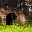 Hidden old building in the forest — Stock Photo #17860711