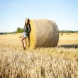 Brunette girl portrait and straw bale  — Stock Photo