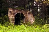 Vecchio edificio nella foresta di nascosto — Foto Stock