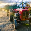 Red old tractor - Foto Stock