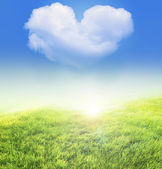 Meadow nad heart shaped cloud — Stock Photo
