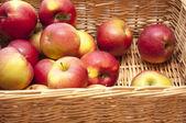 Red fresh apple — Stock Photo