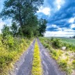 Dirt road in the countryside — Stock Photo