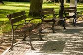 Empty bench in the park — Stock Photo