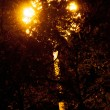 Street light at night — Stock Photo