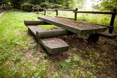 Wooden picnic tables in the woods — Stock Photo
