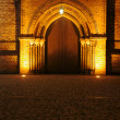 Portal to gothic church by night in Poznan - 图库照片
