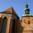 Gothic parish church in Gniezno — Photo #18216657