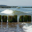 Wooden breakwater Baltic sea — Stock Photo