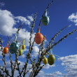 Catkins and easter eggs — Stock Photo