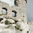 Ruined medieval castle with tower in Ogrodzieniec - Stock Photo