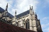 Iglesia gótica de la catedral de saint-pierre-et-saint-paul de troyes — Foto de Stock