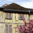 Medieval tenement and flowering almond tree in Troyes — Stock Photo