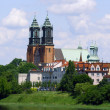 River Warta and Archicathedral Basilica — Stock fotografie