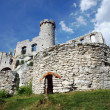 Stock Photo: Ruined medieval castle with tower