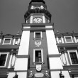 Stock Photo: City Hall with tower in Zamosc