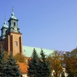 Archicathedral Basilica in Gniezno — Stock Photo #8873655