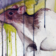 Stock Photo: Illustrated rat