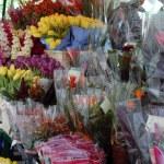 Flowers in flower shop — Stock Photo #45920543