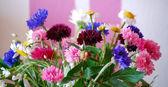 Beautiful spring flowers, cornflowers and daisies — Stock Photo