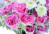 Frozen flowers background — Stock Photo