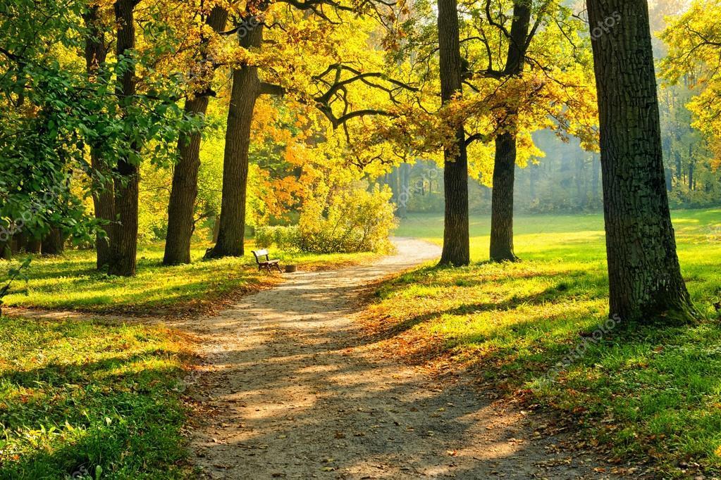 Теплые картинки про осень