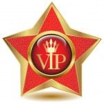 Gold star VIP icon. Vector — Stock Vector