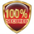 Secured Web icon.Vector — Stock Vector