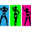 Female strip bikini silhouettes.Vector - Stock Vector