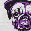 Grafitti Dog in purple — Stock Photo