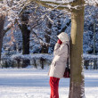 Winter time — Stock Photo #36790459