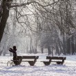 Winter time — Stock Photo #36790553