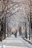 Wintertijd — Stockfoto