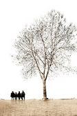 L'albero — Foto Stock
