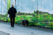 Walking with dog — Foto Stock