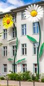Flower decoration on a house facade in Berlin — Φωτογραφία Αρχείου