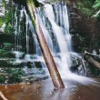 Stock Photo: Deep forest waterfall