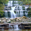 Stock Photo: Liffey falls