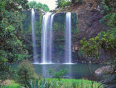 Whangarei Falls — Stock Photo