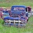 Old cars dump — Stock Photo