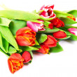Tulips bouquet — Stock Photo #34380265