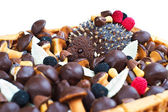 Hedgehog cake with musrooms candies — Stock Photo