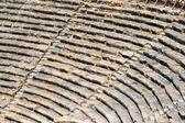 Ancient Greek or Roman Amphitheatre — Stock Photo