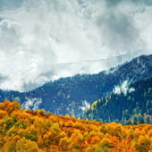The mountain autumn landscape — Stok fotoğraf