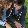 Portrait of young couple at the park using a laptop — Stock Photo