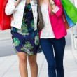 Stock Photo: Two young friends shopping together